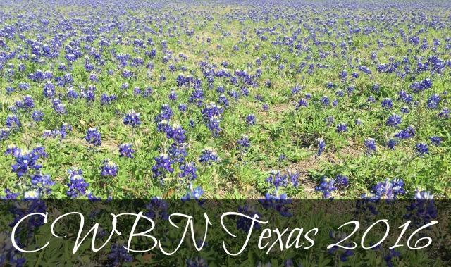 cwbn tx bluebonnet.jpg